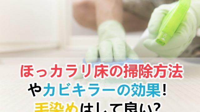 ほっカラリ床の掃除方法とカビキラーの効果